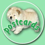 Chow-chow postcards of chow chow kennel Russia IL DE BOTE